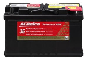 ACDelco 94RAGM Car Battery